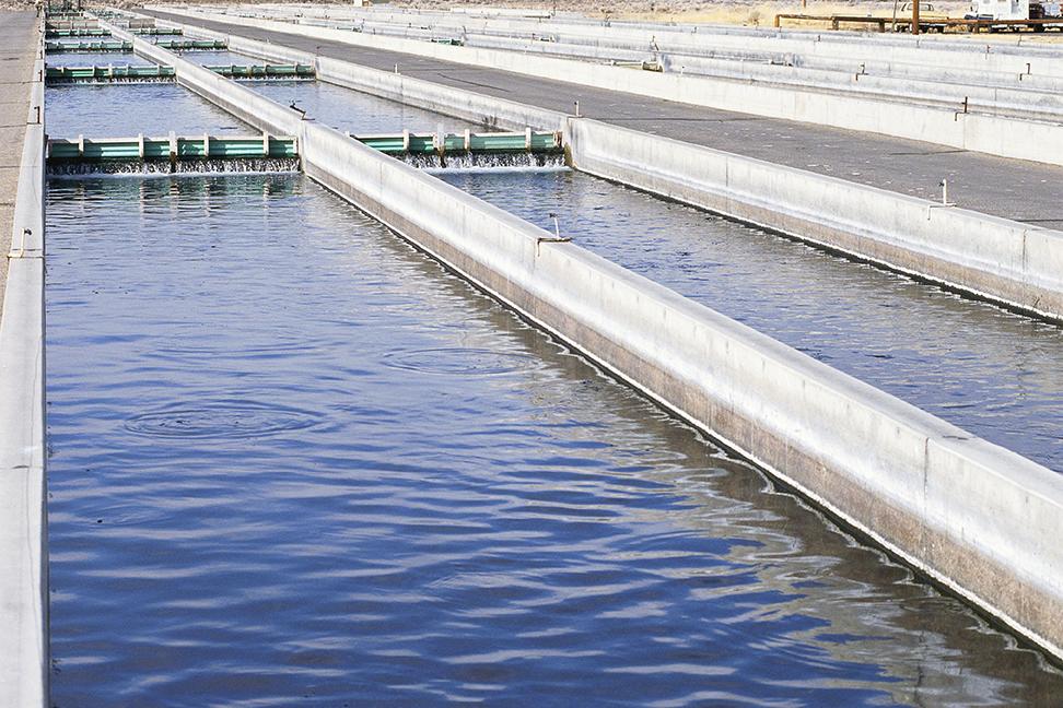 waste water management at fish hatchery